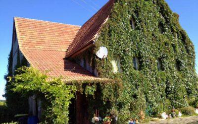 — VERKAUFT — Künstlerhaus am Waldrand – Schwarzwald