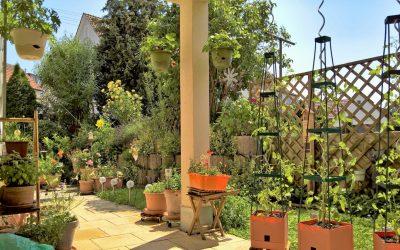 — VERKAUFT — Traumhafter Garten und Terrasse – Neuwertige 3-Zi.-EG-Wohnung in WN-Bittenfeld !