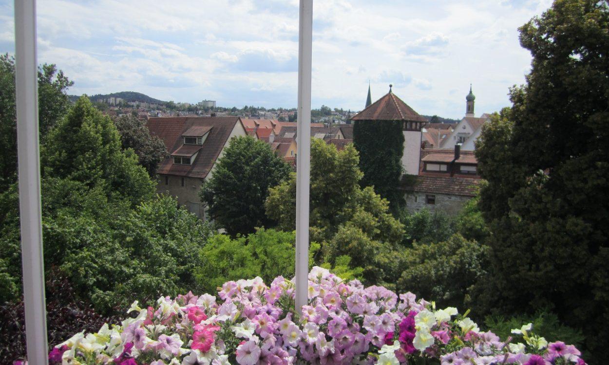 Klein aber fein, 1 Zi Whg mit Blick über die Dächer von Rottenburg!