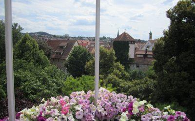 — VERMIETET — Klein aber fein, 1 Zi Whg mit Blick über die Dächer von Rottenburg!